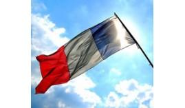 Master Executive en Francés Profesional (Nivel Oficial Consejo Europeo B2)